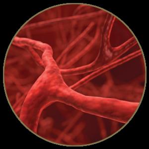 改善微血管顯現